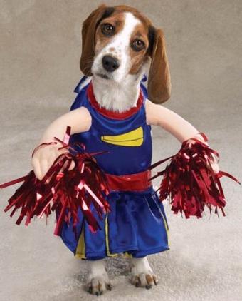 dog-costume-10