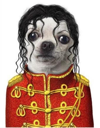 Doggie Jackson