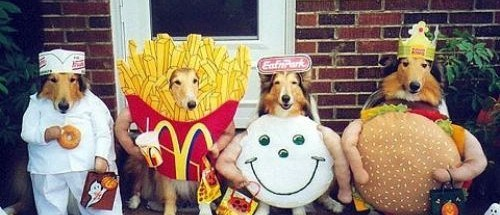 Happy-meal-dogs1-e1351459404149
